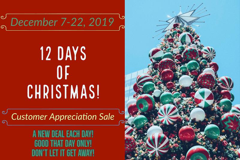 12 Days of Christmas Intro